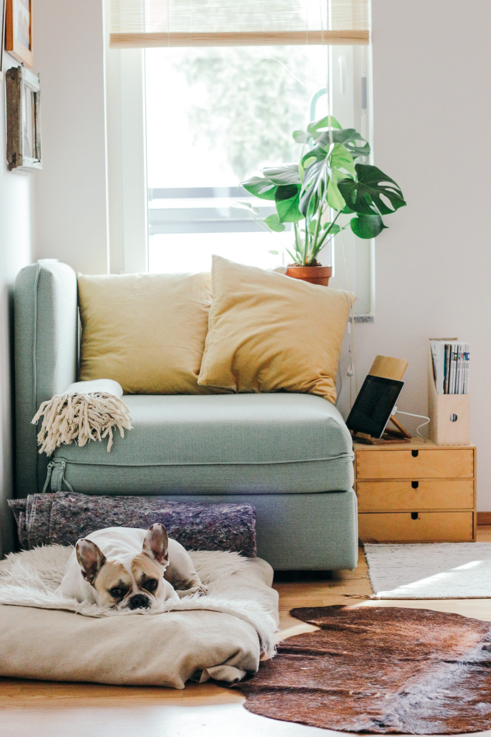 Consejos para ahorrar en el hogar